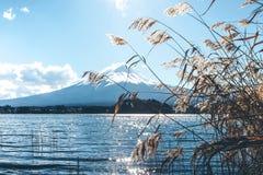 Céu azul de Fuji Fotos de Stock Royalty Free