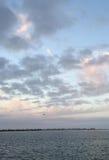 Céu azul de Lavandar Foto de Stock