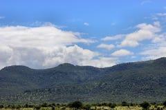 Céu azul de monte verde Fotografia de Stock