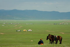 Céu azul do nómada com cavalos fotografia de stock