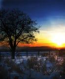 Céu azul e alaranjado Fotografia de Stock