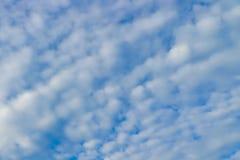 Céu azul e fundo pulverulento das nuvens fotografia de stock royalty free