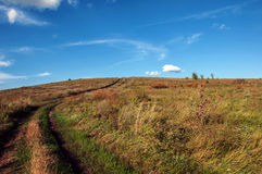 Céu azul e grama verde Imagem de Stock