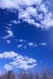 Céu azul e nuvens brilhantes Imagem de Stock Royalty Free