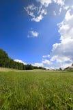 Céu azul e nuvens encantadoras sobre o prado do verão Imagem de Stock Royalty Free