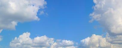 Céu azul e palmas da paisagem imagem de stock