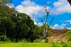 Céu azul e templo naturais Sri Lanka imagem de stock royalty free