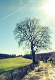 Céu azul e traços de aviões e da estrada à nenhumaa parte fotografia de stock royalty free