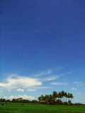 Céu azul em Ricefield Fotografia de Stock Royalty Free