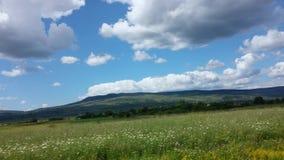 Céu azul, nuvens inchado e terreno verde imagens de stock royalty free