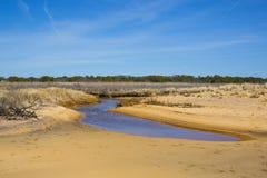 Céu azul, praia, paisagem do córrego Imagem de Stock