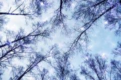 Céu, azul, sumário, espaço, nuvens, nuvem, obscuridade, estrela, noite, galáxia, luz, natureza, tempestade, textura, preto, estre ilustração do vetor