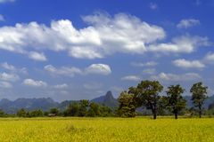 Céu, campos, montes Fotos de Stock Royalty Free