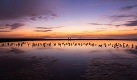 Céu colorido calmo do nascer do sol no banho Newcastle Austrália do oceano fotografia de stock royalty free
