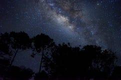Céu completamente das estrelas Fotos de Stock Royalty Free