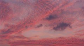 Céu cor-de-rosa bonito após o por do sol Imagem de Stock Royalty Free