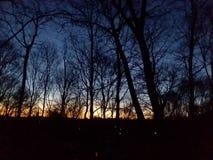 Céu da manhã imagens de stock