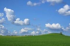 Céu da mola fotos de stock