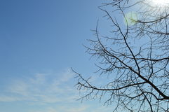 Céu da mola Fotos de Stock Royalty Free