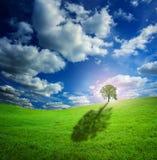 Céu da natureza Imagem de Stock