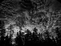 Céu da noite do verão Foto de Stock