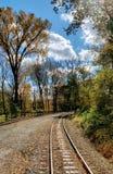 Céu das árvores da estrada de ferro imagem de stock