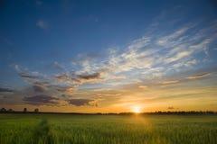 Céu das nuvens e sol de ajuste no campo Imagens de Stock Royalty Free