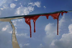 Céu de Blooding Foto de Stock Royalty Free