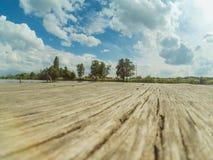 Céu de madeira velho das árvores do cais e da paisagem com nuvens Fotografia de Stock Royalty Free