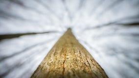 Céu 1 do inverno imagens de stock