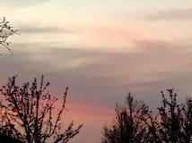 Céu do inverno Imagens de Stock Royalty Free