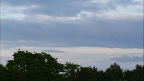 Céu do lapso de tempo do por do sol e central elétrica movente Letónia 4K das nuvens filme