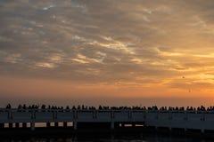 Céu do por do sol com nuvens e grupo de pessoas alaranjados foto de stock royalty free