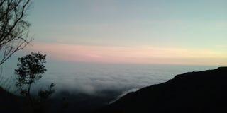 Céu do salto da árvore do monte da montanha imagens de stock