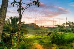 Céu do vermelho da manhã da paisagem da exploração agrícola da montanha do campo Imagem de Stock Royalty Free