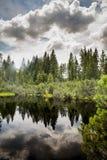 Céu do witk do pântano e do lago em Sumava Imagens de Stock Royalty Free