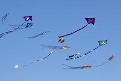 Céu dos papagaios Fotografia de Stock