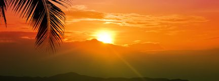 Céu dourado da hora do por do sol com o sol sobre a montanha e folha de palmeira para o fundo largo da bandeira das férias de ver fotos de stock royalty free