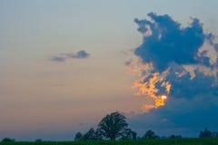 Céu dramático sobre uma árvore. Imagens de Stock Royalty Free