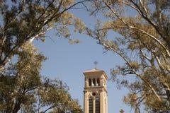 Céu e árvores da torre foto de stock royalty free