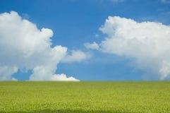 Céu e campo Foto de Stock Royalty Free