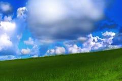 Céu e grama Imagem de Stock Royalty Free