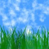 Céu e grama Fotografia de Stock Royalty Free