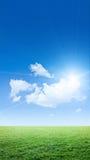 Céu e grama claros foto de stock