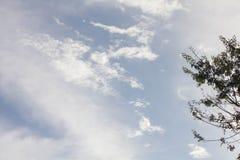 Céu e nuvem no inverno Fotografia de Stock Royalty Free