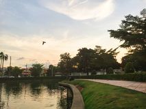 Céu e rio onde tenha um pássaro Imagens de Stock Royalty Free