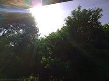 Céu ensolarado Fotos de Stock