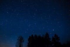 Céu estrelado Fotos de Stock