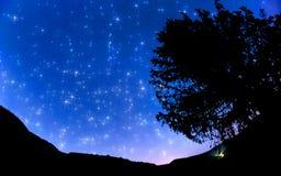 Céu estrelado Imagem de Stock Royalty Free