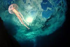 céu-mar Imagem de Stock